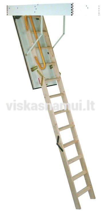Palepes Laiptai Trad Plus 120x70x280